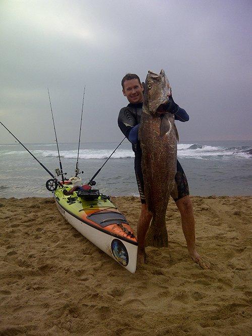 Corvina pescada desde kayak con pez vivo.